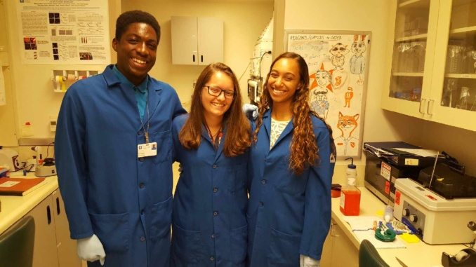 medical assistant essay More employment essay topics that is making the need for medical assistants, along with many other careers such as doctors, nurses, etc, to be in high demand also.