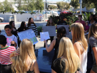 Students against President Donald Trump participated in a walk-out from class. Students are pictured here gathered in front of Manhattan Beach City Hall.