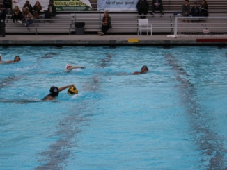Junior Isabelle Chiu swims towards the ball at the Varsity Girls Waterpolo Game Wednesday after school against West. Costa beat West High School 17-1 and their next game is next week.