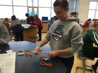 Junior Grace Demartini makes a DNA model using beads and pipe cleaners during Ms. Bledsoe's AP Biology class. The course has had a lot of hands on activities similar to this one throughout the year.