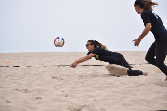 volleyball essay outline Essays - largest database of quality sample essays and research papers on history of volleyball.