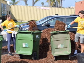 (Brogan Tyrer/La Vista) Members of Mira Costa High School's Associated Student body shovel dirt during the annual Costa Pride Day.  Students and teachers were welcome to attend the event to clean up around the school.