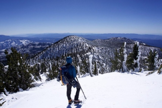 tumblr_or5patO5ks1u2sxh2o4_540
