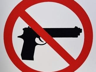 gun-control-1422577__340