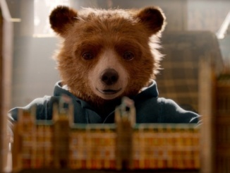 Photo courtesy of Pinterest. The film's plot is both charming and gripping, as the viewer is constantly cheering the little bear.